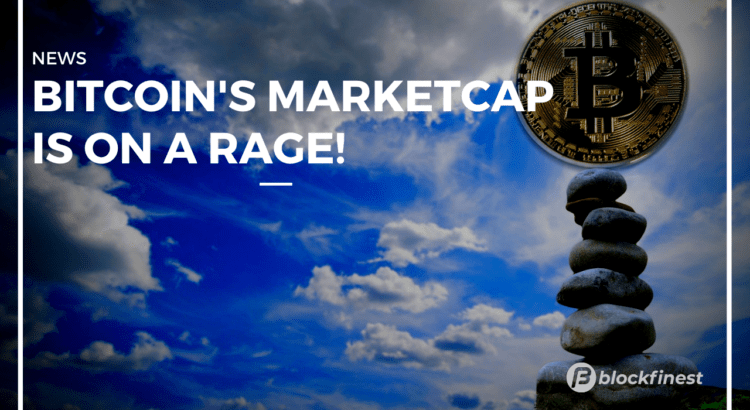 bitcoin's marketcap is on a rage!