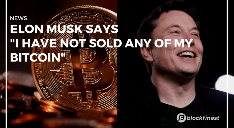 elon musk discloses he doesnt sold hit bitcoin